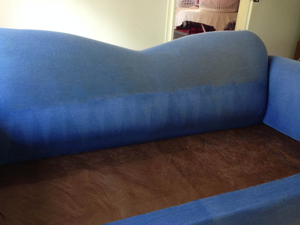 Upholstery Cleaning Touch Dry Carpet Cleaning Pest Control