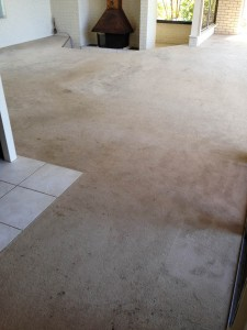 Real Estate Carpet Cleaning