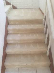 Stair Carpet Cleaning